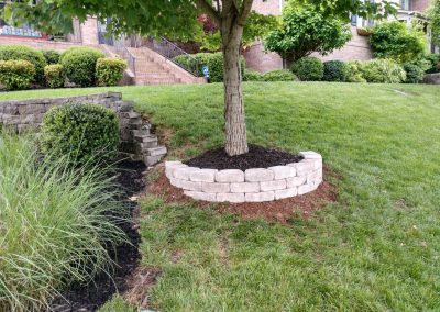 Paver Stone Tree Well